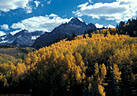 Fall Colors in the San Juan Mountains - Gallery 1