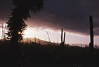 Low sun and storm filled skies and an asterism in a Valida Yucca.