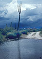 A storm looms ahead along the old road through Catavi�a  Mesa.