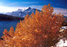 Autumn Landscapes - Canadian Rockies Gallery II